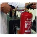 Revisión anual de extintor de polvo abc 1 kg tabla II